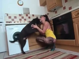 Dirty whore taking dog's cock inside her cunt - Hardcore animals porn