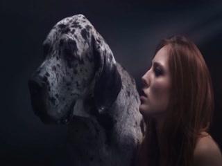 Love animals and fuck animals - Dog sex