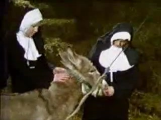 Poor horse porn with beasty nuns