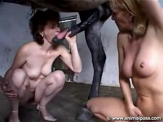 Lick her pussy clean