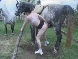 Horny girl slut fucking horse free porn