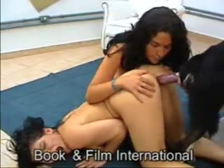 Black Hair Orgams Blowjob Sex dog