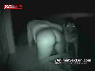 Cam Dark Dog sex girl