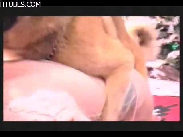 Dog Sex girl - Amateur free porn - Porn Tubes Video Sex | fapig.com