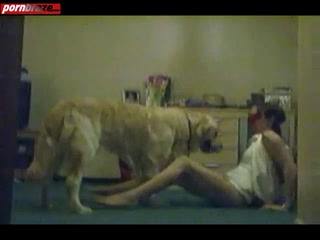 Sex Cam With Animal