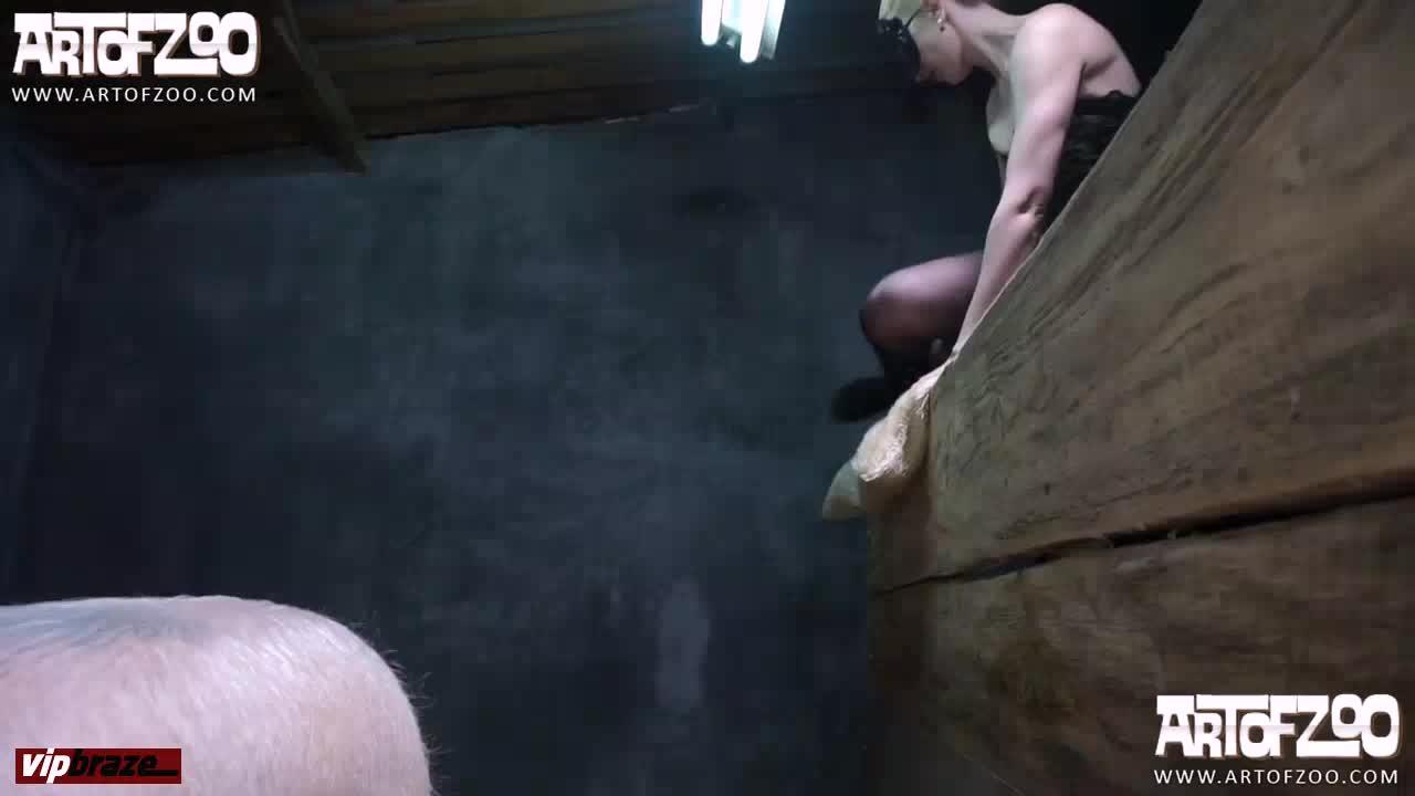 [Zoo] ArtOfZoo  - Pig Porn , Girl Sex Animal - Amateur free porn - Porn Tubes Video Sex | fapig.com