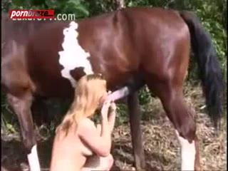 Big Horse Cum Full Pussy